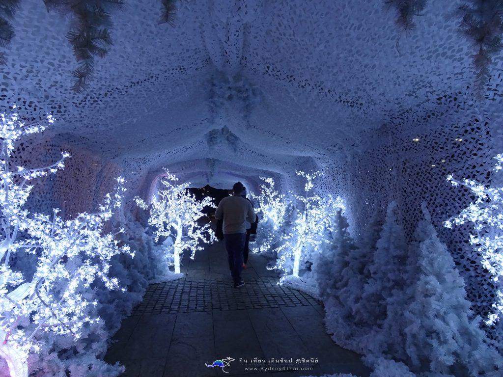 ซิดนีย์ Winter Festival snow