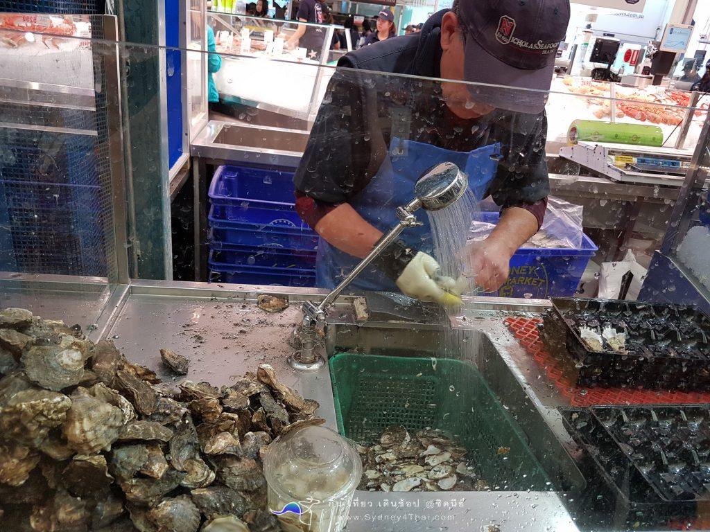 Seafood Fish Market Sydney Australian 003