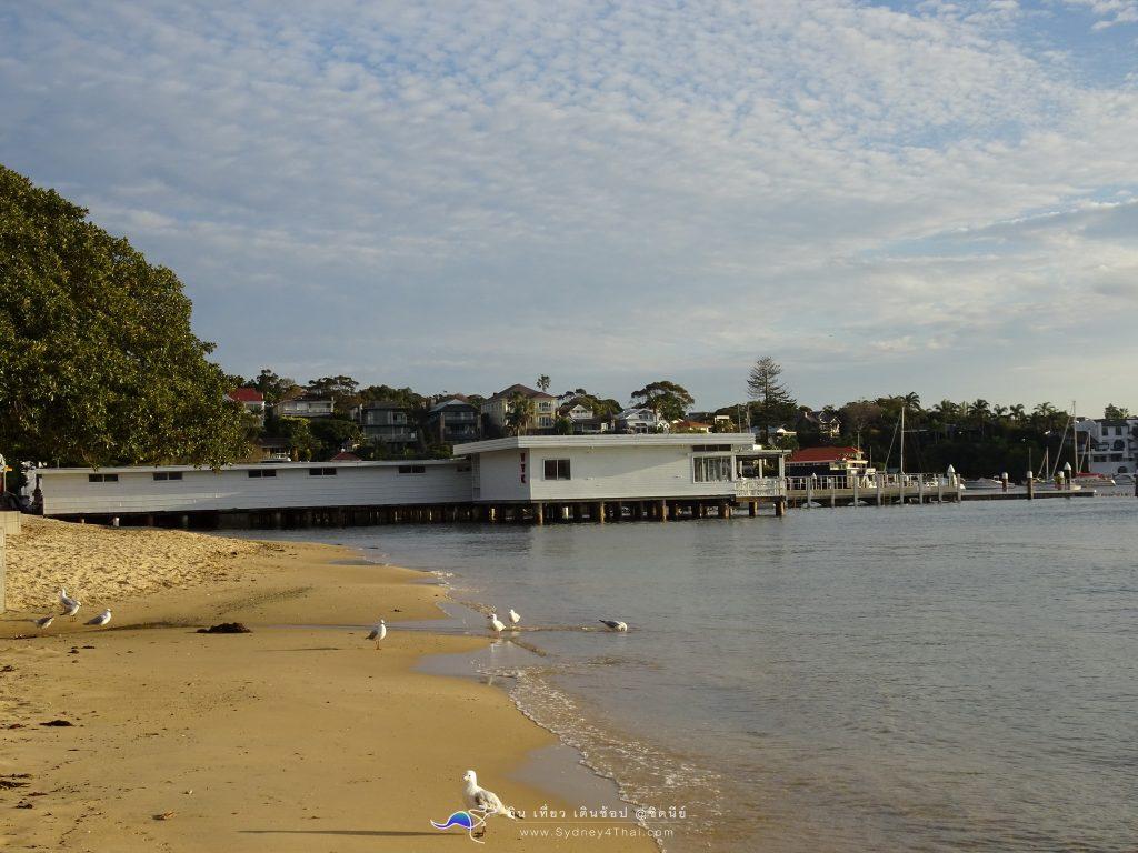 เที่ยว ซิดนีย์ Watson Bay ประเทศออสเตรเลีย