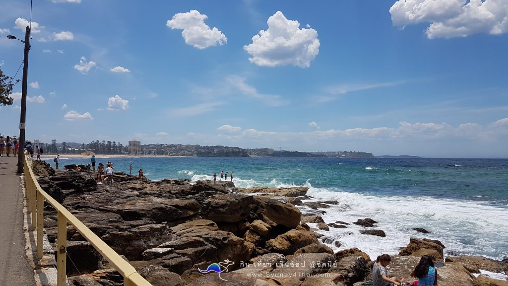 Manly Beach Sydney Shelly Beach 004
