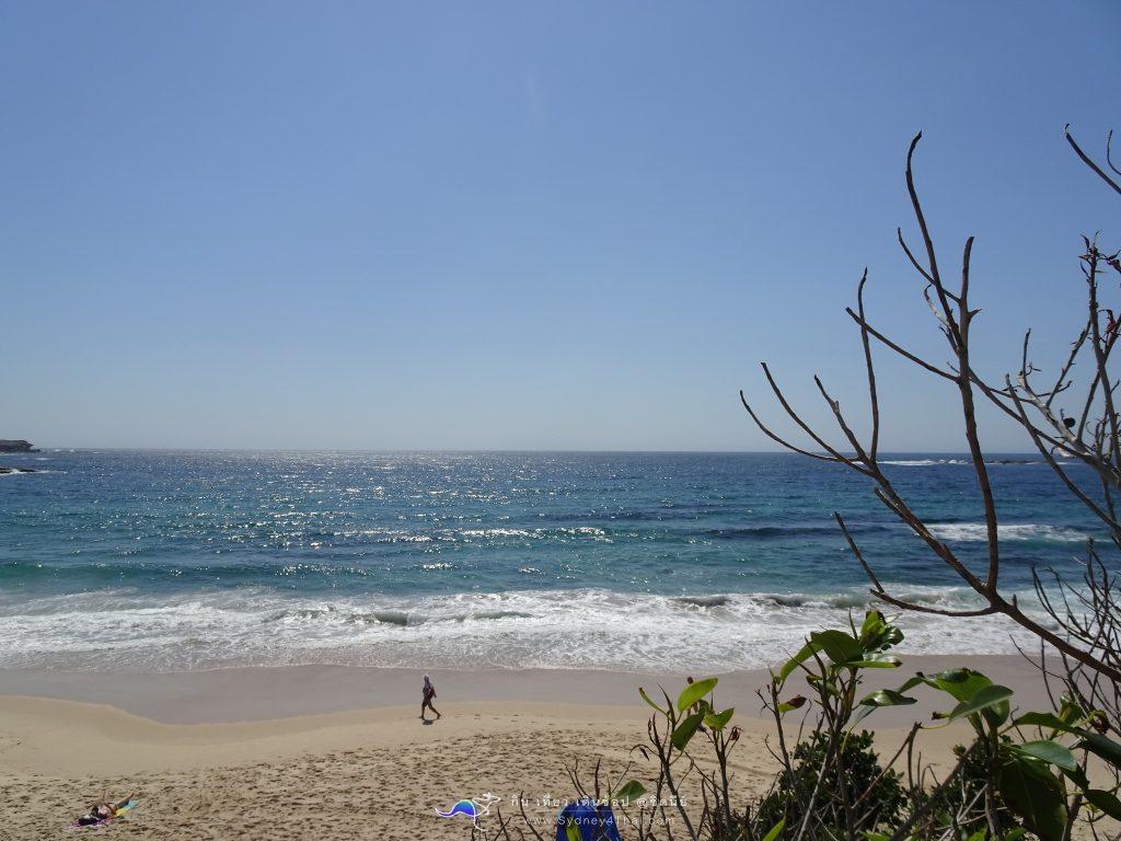 เที่ยวCoogee Beach เที่ยว ทะเล Coogee Beach @ ซิดนีย์ 001