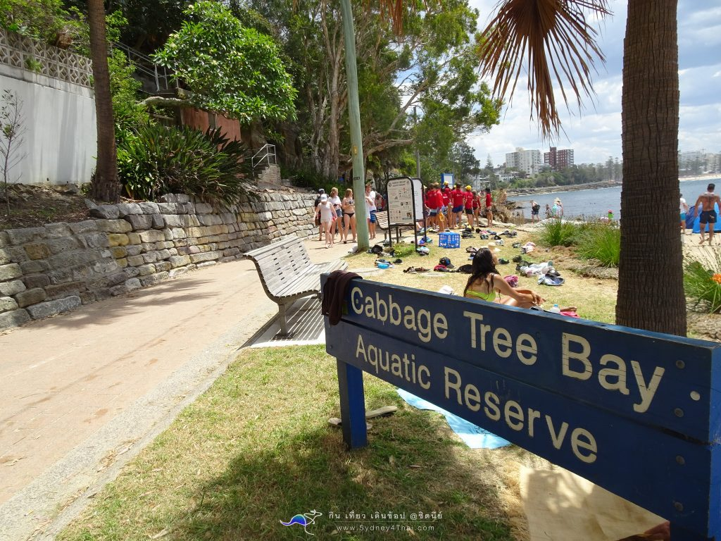 Manly Beach Sydney Shelly Beach Cabbage Tree Bay