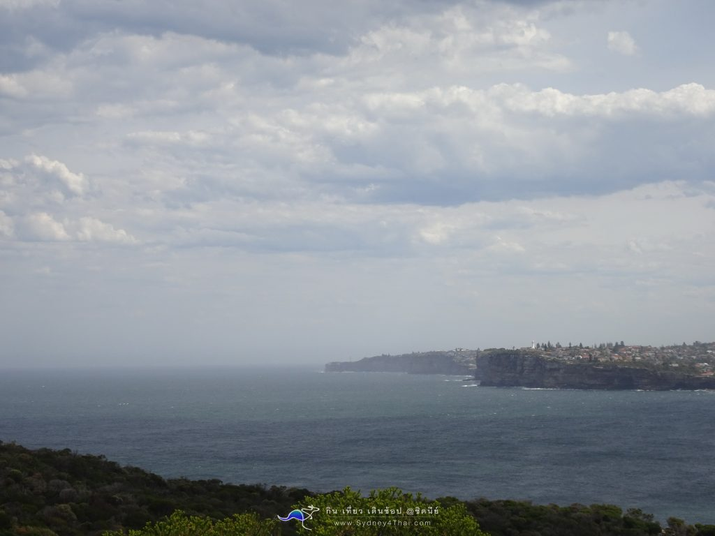 North Head Manly Beach 001