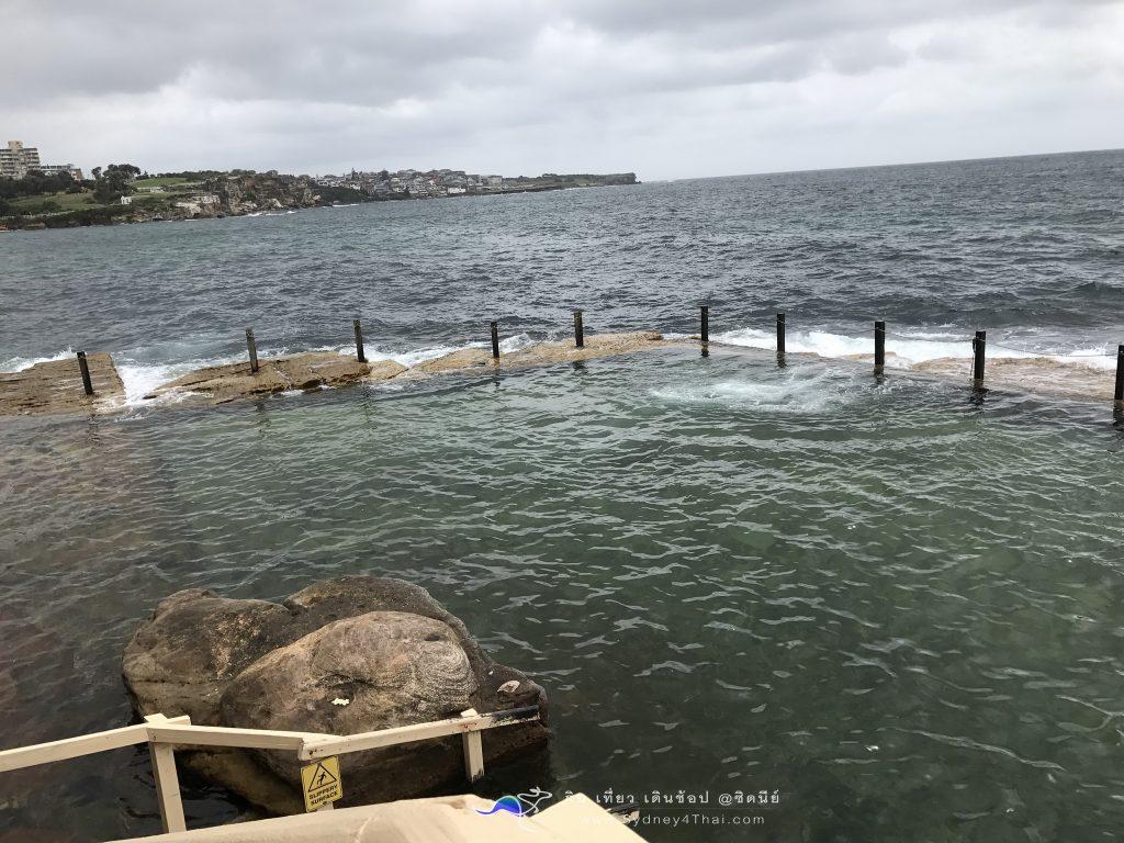 ทะเลซิดนีย์ McIvers Baths Coogee Beach 005