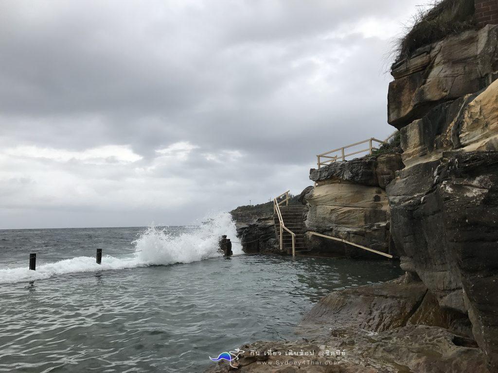 ทะเลซิดนีย์ McIvers Baths Coogee Beach 006