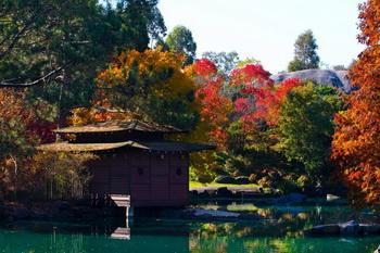 10 สถานที่ท่องเที่ยวซิดนีย์ ฤดูใบไม้ผลิ