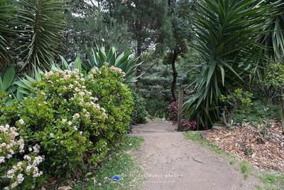 เที่ยว Luna Park Landmark ของซิดนีย์ Wendy's Secret Garden 007