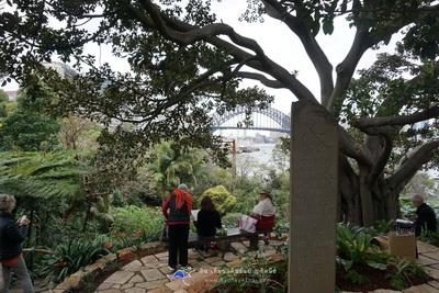 เที่ยว Luna Park Landmark ของซิดนีย์ Wendy's Secret Garden 005