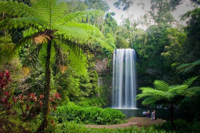 ทัวร์ออสเตรเลีย 6 เมืองน่าเที่ยวที่สุด เที่ยวเมืองแคนส์