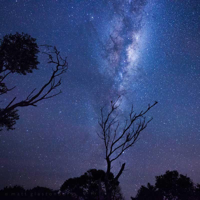แสงใต้ ออโรรา ที่อุทยานแห่งชาติ Narawntapu