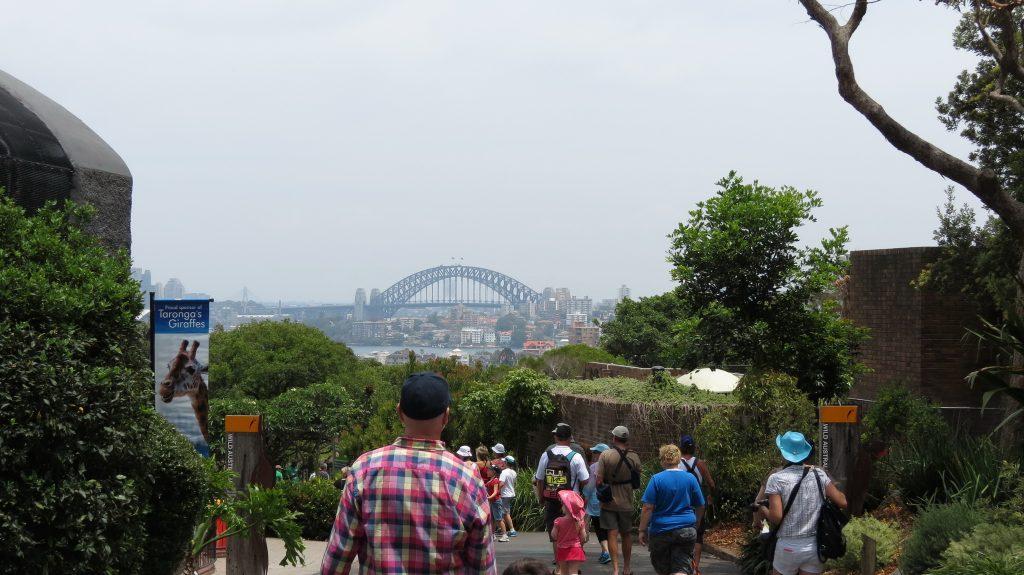 เที่ยวซิดนีย์ 1 วัน สวนสัตว์ Taronga Zoo 002