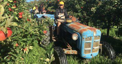 35 ฟาร์มงานเก็บผักผลไม้ สู่ชีวิตชาวไร่ชาวสวนที่ออสเตรเลีย