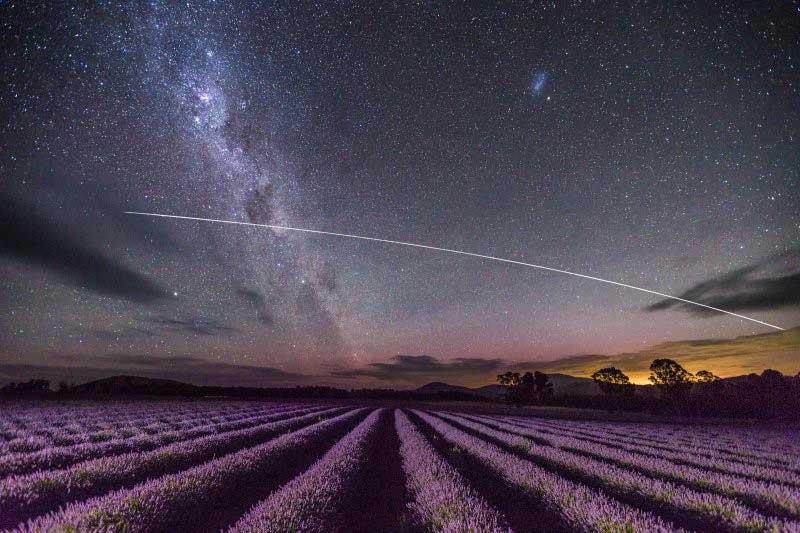 แสงใต้ ออโรรา ออสเตรลีส ที่ ทุ่งลาเวนเดอร์