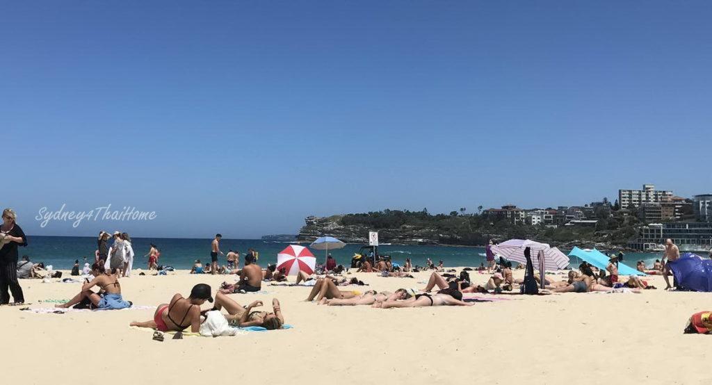 ท่องเที่ยวหาด Bondi เที่ยวกับแซนดี้